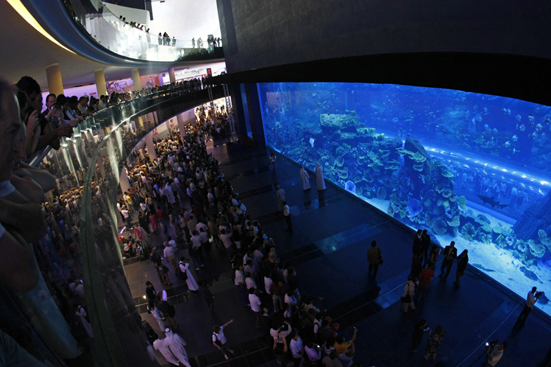 project_helvar_lighting_control_dubai_mall_02_aquarium